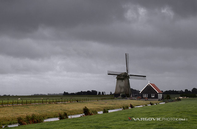 Late Peaceful afternoon on small windmill farm in Northern Holland
